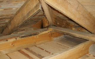 Холодная крыша без гидроизоляции