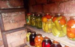 Как обработать подвал для хранения овощей?