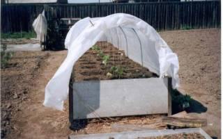 Как сделать теплую грядку весной для огурцов самостоятельно