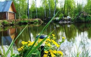 Как построить водоем для разведения рыбы?