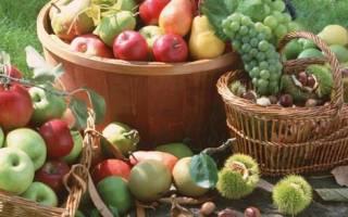 Приспособление для сбора фруктов своими руками
