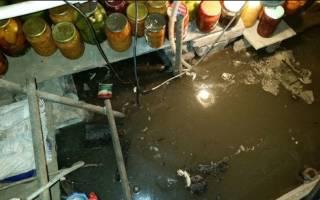 Вода в подвале частного дома что делать?