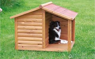 Как правильно построить собачью будку?