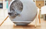 Как построить дом для кошки своими руками?