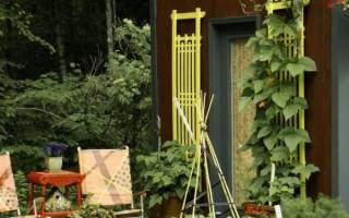 Как сделать дизайн огорода с грядками в частном доме